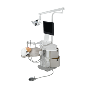 Simuladores dentales